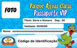 carteira-acesso-site-v01